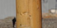 Limtræ søjle